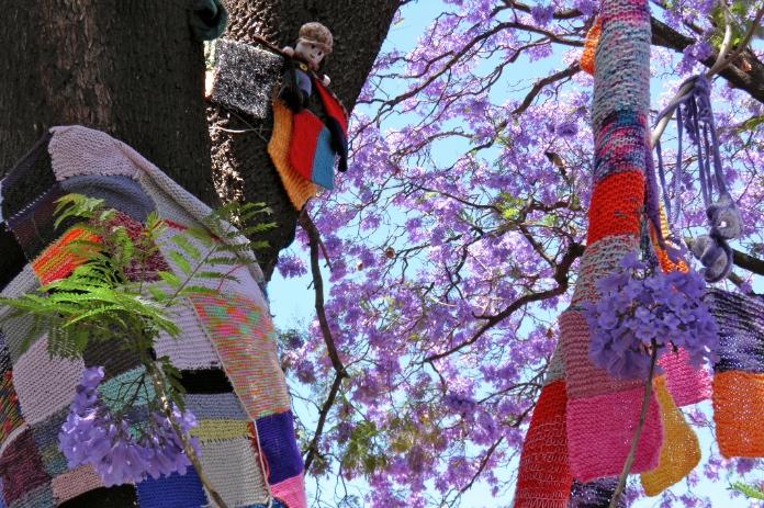 yarn bombing adelaide 3