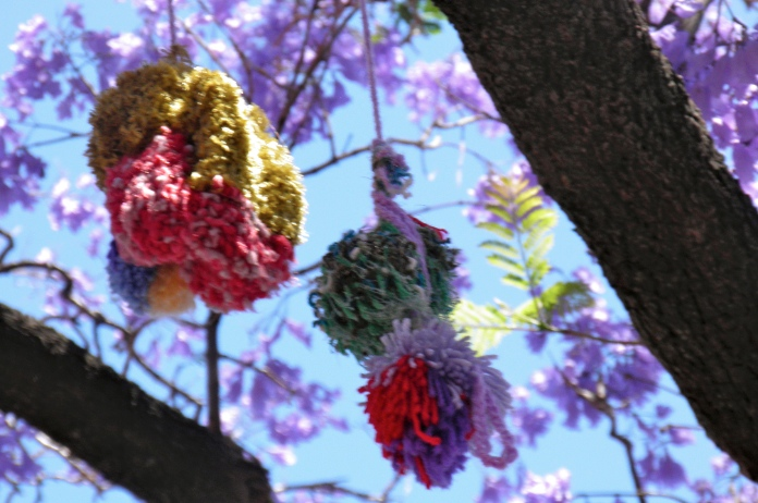 yarn bombing adelaide pom poms