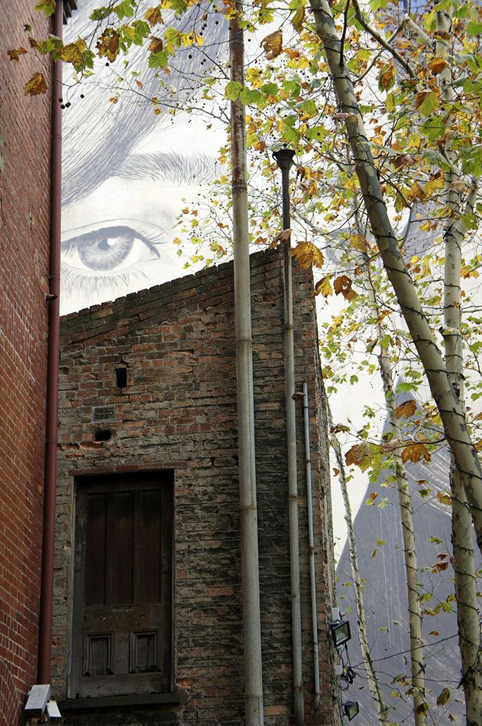 Rone street art 80 collins street melbourne